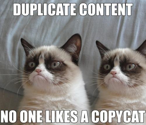 Duplicate Content Grumpy Cat